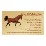 Horse Farm Riding School Pony Club Business Cards