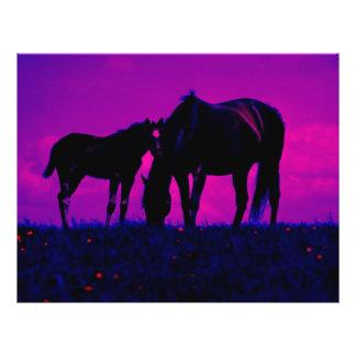 Horse & Filly 21.5 Cm X 28 Cm Flyer