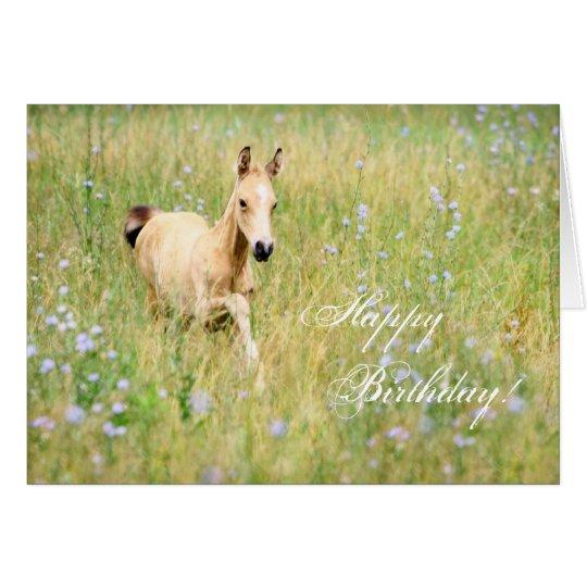 Horse Foal Birthday Card
