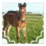 """Horse Foal Invitation 5.25"""" Square Invitation Card"""
