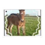 Horse Foal iPad Mini Covers