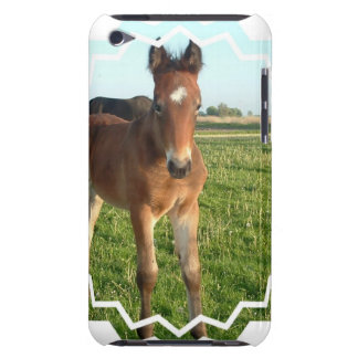 Horse Foal iTouch Case