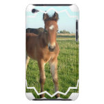 Horse Foal iTouch Case Barely There iPod Cases