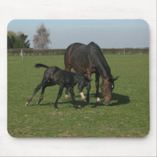 Horse & Foal Mouse Pad