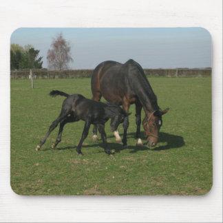 Horse & Foal Mousepad