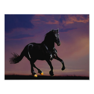 Horse galloping free 11 cm x 14 cm invitation card