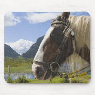 Horse Gap of Dunloe County Kerry Ireland Mousepad