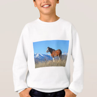 Horse Grass and Mountains Sweatshirt
