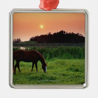 Horse Grazing in Field at Sunset Near Edmonton, Christmas Ornament