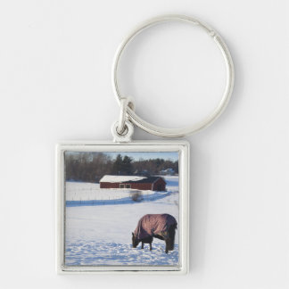 Horse grazing on a snow-covered field on Ekero 2 Key Ring
