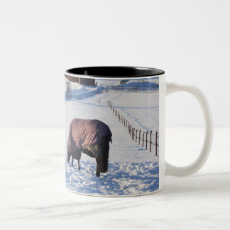Horse grazing on a snow-covered field on Ekero 2 Two-Tone Coffee Mug