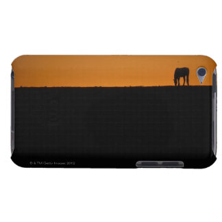 Horse grazing on Kentucky farm iPod Case-Mate Cases