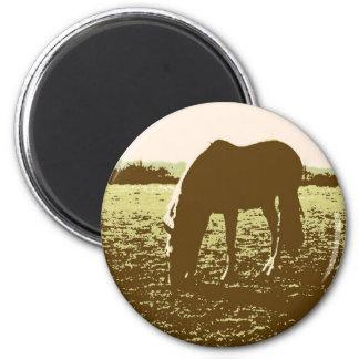 Horse Grazing Pop Art Refrigerator Magnet