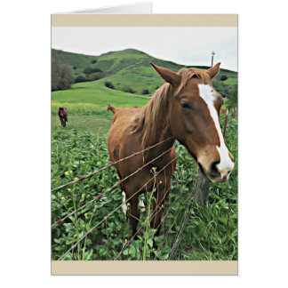 Horse Greeting Card, Blank Card