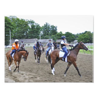 Horse Haven Photograph