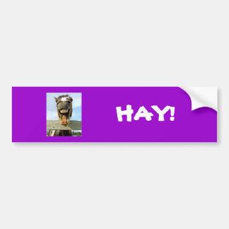 horse, HAY! Bumper Sticker