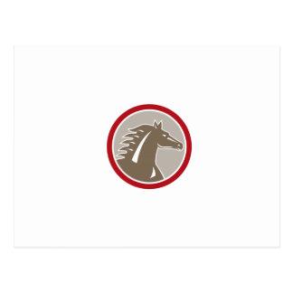 Horse Head Angry Circle Retro Post Card