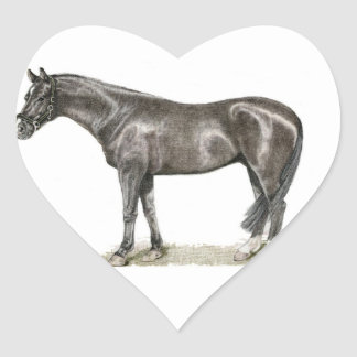 Horse Heart Sticker