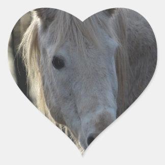Horse Heart Sticker