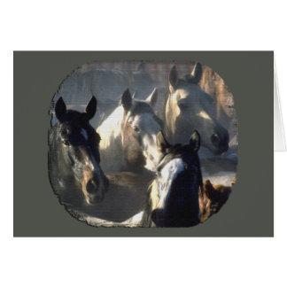 Horse Herd Card