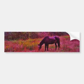 Horse in a Kaleidoscope Colored Field Bumper Sticker