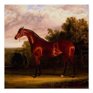 Horse In A Landscape Print
