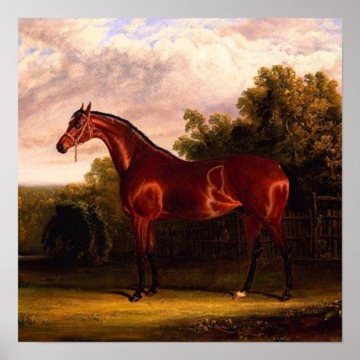 Horse In A Landscape Print
