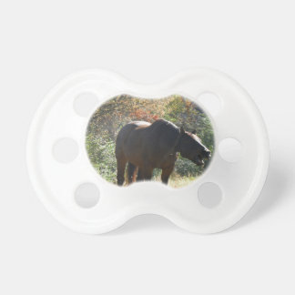 Horse in Autumn Pacifier