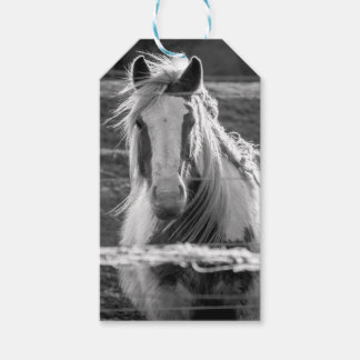 Horse in Black and White Gift Tags
