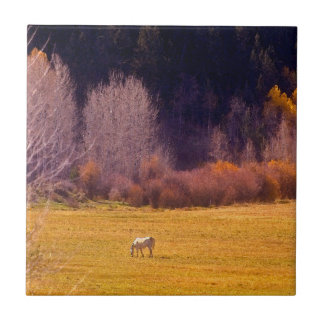 Horse In Fall I Tile