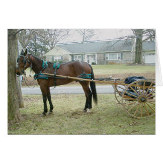 Horse in Harness Note Card