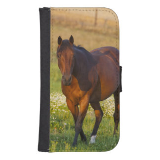 Horse in pasture near Pullman, Washington Samsung S4 Wallet Case