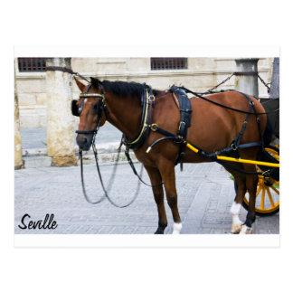 Horse in Seville Postales
