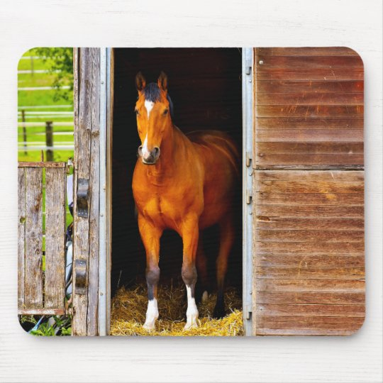 Horse In Stable Mouse Mat