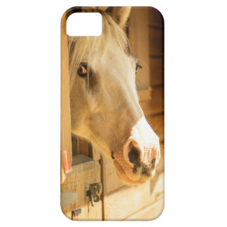 Horse in stables iPhone 5 case