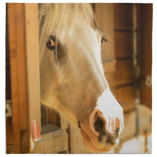 Horse in stables napkin