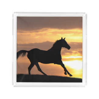 Horse In Sunset Acrylic Tray