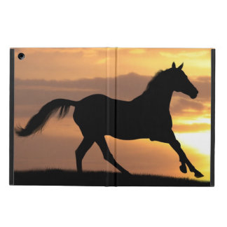 Horse In Sunset Case For iPad Air