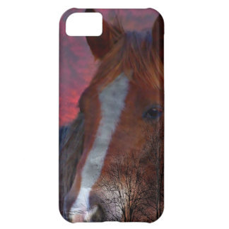 horse in sunset iphone case iPhone 5C covers