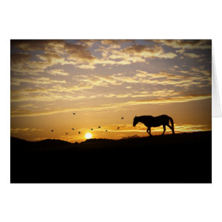 Horse in sunset sympathy card