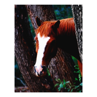 Horse in the forest personalized flyer
