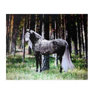 """Horse In The Forest"" Panel Wall Art"