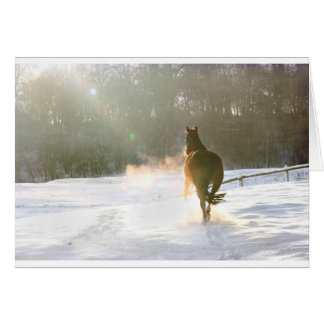 Horse in the snow card