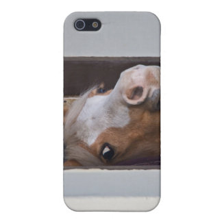 Horse in the Stables iPhone 4 Case