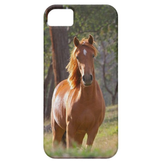 Horse In The Woods Barely There iPhone 5 Case