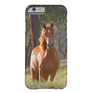 Horse In The Woods Barely There iPhone 6 Case