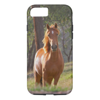 Horse In The Woods iPhone 7 Case