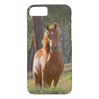 Horse In The Woods iPhone 8/7 Case