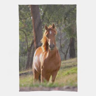 Horse In The Woods Tea Towel