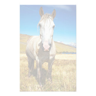 Horse in Torres del Paine National Park, Laguna Stationery Paper